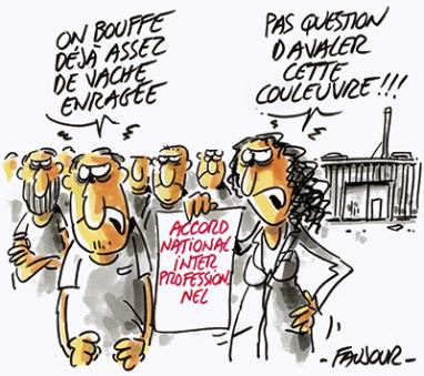 ANI : « Réveille-toi, Pierre, elle est passée, la loi sur l'insécurisation de l'emploi!» dans Austerite anifaujour