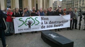 sos_forets