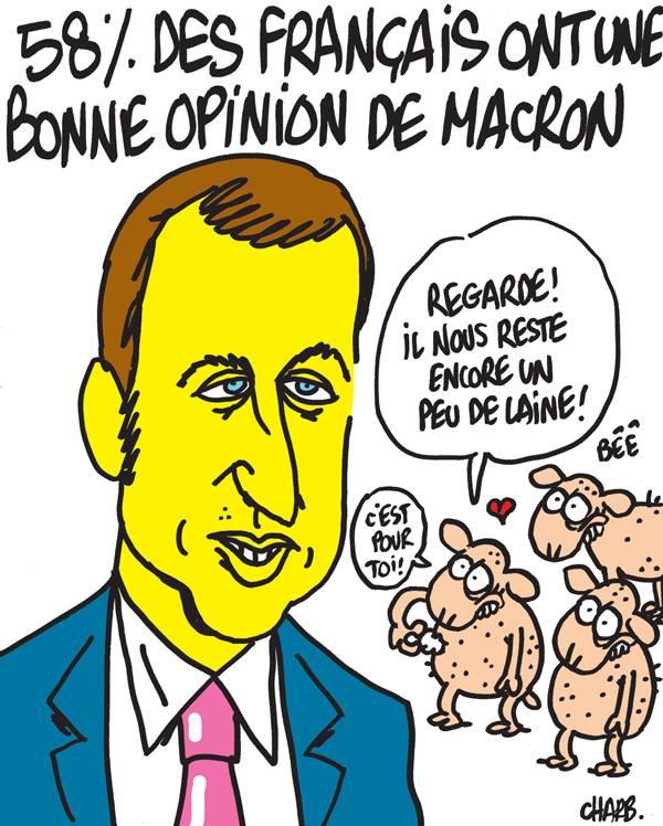 caricatureMacron