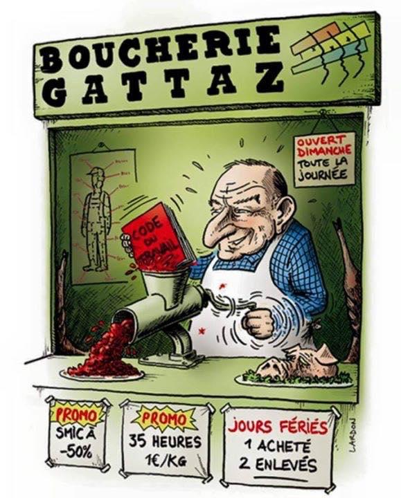 gattaz1